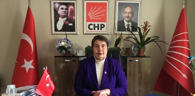 DR ZELİHA AKSAZ ŞAHBAZ CHP İL BAŞKANI PANDEMİ KONUSUNDA DÜŞÜNDÜKLERİ